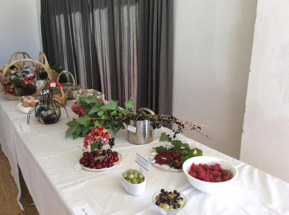 fruits of the wakatipu