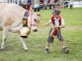 Champion-Pet-in-Grand-Parade-1