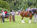 Glynne Smith judging the Clydesdales