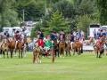 Horses in Grand Parade 2
