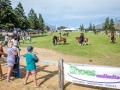 Leading Rein section sponsored by Shoes Unlimited