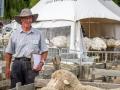 Sheep Chief Steward - Bruce Patton