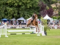 Show Jumping Donna Smith & Crowd