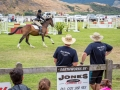 Show Jumping sponsored by Jones Contracting